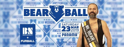 Mr. Bear Netherlands elections